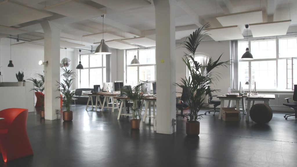Office space with plants and high ceilings